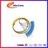 Treccia ottica della fibra dello Sc 12 della fibra poco costosa FTTH di memorie MP