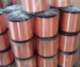 Fil plaqué de cuivre de l'aluminium Wire/CCA