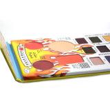 12 conjuntos del maquillaje del lustre del labio de los colores de los colores Foundation+2 de la sombra de ojo de los colores Pallete+2