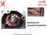 6 motore profondo della pompa buona del motore Waterfilled sommergibile di pollice 10HP