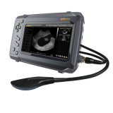 Vieh-Geräten-beweglicher Screen-Ultraschall-Scanner mit rektalem linearem Fühler