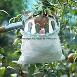 Frucht-Picker-Kopf-Korb-oder Frucht-Sammeln-Hilfsmittel, Frucht-Fangfederblech für Ernte-Sammeln-Apple-Zitrusfrucht-Birnen-Pfirsich Esg10326