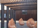 Crative paisaje al aire libre cercado de bambú
