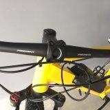 Il pedale del freno a disco ha aiutato senza spazzola con 500W potere Moutain Ebike