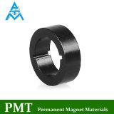 D55 Magneet de In entrepot van de Zeldzame aarde met het Magnetische Materiaal van het Neodymium