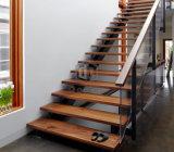 Escadaria do feixe dobro/escada de etapa de madeira com trilhos de vidro