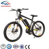 電気自転車MTBのバイクLmtdf-29L