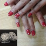 Nail Art Flocons de cristal de diamant Glitter Flash