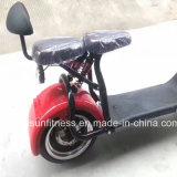 セリウムが付いている脂肪質のタイヤの電気自転車の電気オートバイの電気スクーター