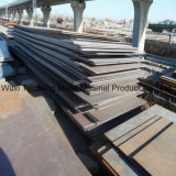 Piatto CZ-S20. del acciaio al carbonio/acciaio al carbonio