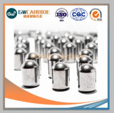 Botón de carburo de tungsteno de alta calidad Bits