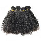 Глубокий курчавый бразильский Weave волос связывает волос Non-Remy