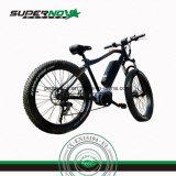 350W Snow Ebike