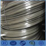 Öl-ausgeglichener flacher Stahldraht der China-Produkt-55crsi 65mn