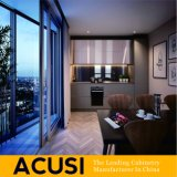 In het groot Eenvoudige Moderne Keukenkasten voor Huis en Projecten (ACS2-L01)