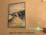 Le plus défunt côté de pouvoir de grande capacité de Danpon avec une ligne verte et l'écran OLED de laser