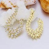 Form-Schmucksachen in überzogenem Zirconia-Ohrring der Hight Qualitäts18k Gold