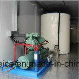 Zeewater/Zoutwater/de Mariene/Zoetwater Containerized Droge Machines van het Ijs van de Vlok/Makers/Installatie met 20FT Container voor Visserij/Concreet het Mengen zich Project