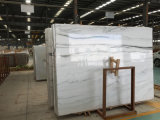 Boek dat van de Tegel van de Panda van China het Witte Marmeren het Marmeren Marmer van de Decoratie van de Muur aanpast