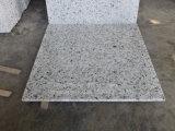 白いカラーBalaの白い磨かれたか炎にあてられたか、または砥石で研がれた花こう岩の床タイルまたは壁のタイルか舗装タイルまたは階段