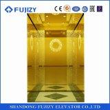 El elevador durable estándar de la elevación de Fujizy con SGS Iaf del Ce aprobó
