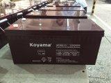 De Accu van Np200-12 12V 200ah UPS