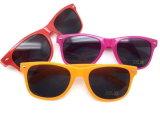 Promoção óculos de sol Vintage Viagem Ambiental