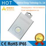 Indicatore luminoso esterno solare impermeabile della strada di illuminazione LED della lampada di via 12W
