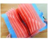 工場直接印刷のCmykの印刷を用いるカスタムファイルホルダー