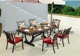 Im Freien/Rattan/Garten/Patio-Hotel-Möbel-Gussaluminium-Stuhl u. Tisch eingestellt (HS3172C &HS7122DT)