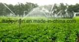Druppelbevloeiing voor het LandbouwSysteem van de Irrigatie