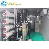 Strumentazione pura di serie di desalificazione dell'acqua del RO 1-1000 tonnellate al giorno