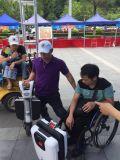 250W de style à la mode 3 roues scooter de mobilité électrique pour les vieux ou les personnes handicapées