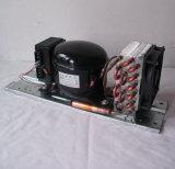 Purswave Bd35hc Gleichstrom-Kompressor-kondensierende Geräte für Maximum 250 des Kühlraum-12V24V48V72V Kompressor-Liter des Kondensator-Thermostate