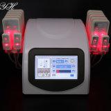 Peau d'utilisation de propriété privée modifiant la tonalité la machine de laser de Lipo avec le manuel de l'utilisateur