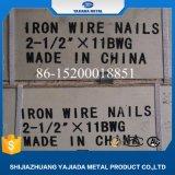 Clavos comunes del alambre con precio de fábrica de los pequeños rectángulos
