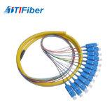 12core Sc/Upc 1310/1550 tresses de fibre de Singelmode pour ODF