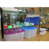 Moldes de injeção de plástico moldado e fabricante do produto