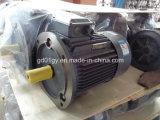 Gaiola de esquilo da eficiência elevada de Siemens Beide motor elétrico de 3 fases, IP55, IC411
