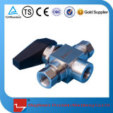 CNG Fleck-Stahlgas-Kraftstoff-Gewehr-Einspritzdüse