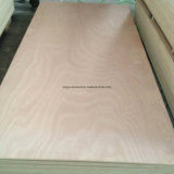 Le contreplaqué commercial, 1220x2440x12mm, le peuplier Core, AA Grade, Bintangor