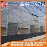 De hoge Plastic Serre van de Brede Spanwijdte van de Tunnel met het Systeem van de Controle