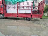 Placa de espuma de PVC Non-Toxic chumbo 1220*2440mm