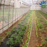 tessuto del Nonwoven di agricoltura di 3%UV pp Spunbond