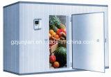 Cella frigorifera del congelatore Walk-in su ordine della frutta e della verdura di industria