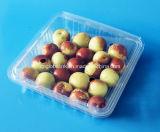 Коробка упаковки еды контейнера плодоовощ сбывания изготовления упаковывая пластичная 500 грамм