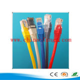 Connecteur RJ45 Connector / Cat5e RJ45 UTP