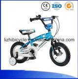 في الهواء الطلق فتى أطفال رياضة دراجة جدي مصغّرة يتسابق دراجة