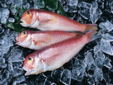 تجاريّة رقاقة [مك مشن] لأنّ سمكة
