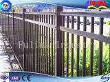 Высокое качество черной краской декоративные ограды из кованого железа (SF-021)